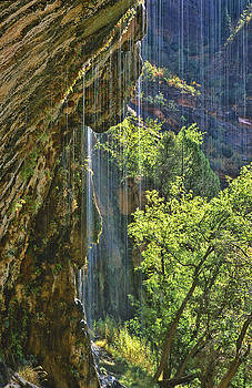 Sandra Bronstein - Weeping Rock - Zion Canyon