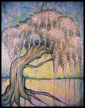Weeping Willow by Matt Mercer