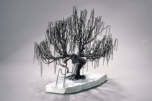 Weeping Willow Wire Tree Sculpture by Mark Golomb
