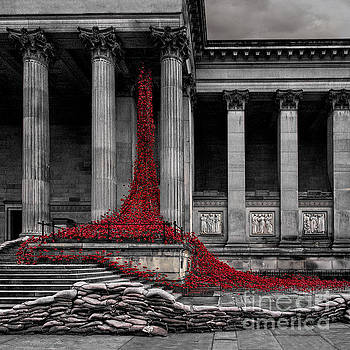 Weeping Window by Roger Green
