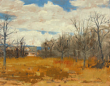 Wehr Nature Center No.1 - 2011 by Anthony Sell