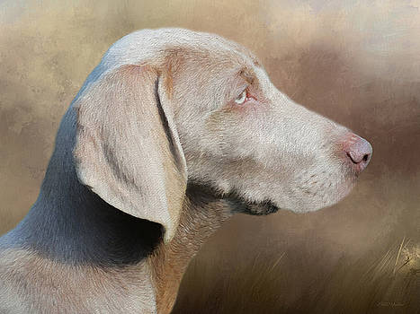 Weimaraner Adult - Painting by Ericamaxine Price