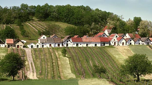 Weinviertel Kellergasse by Menega Sabidussi