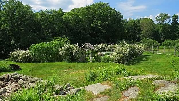 Weir Farm National Historic Site 03 by Jonathan Sabin