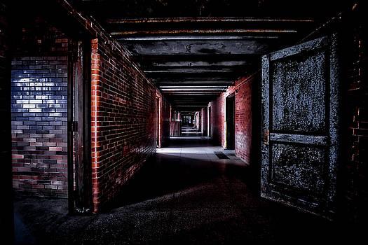 Visions by Daniel Gundlach