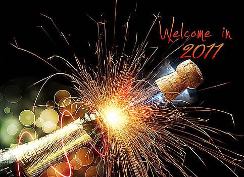 Welcome in 2011 by Roibu Laurentiu