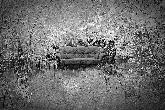 Welcome to My Living Room by Steven Coppenbarger