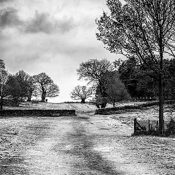 Well Trodden Path by Nick Bywater