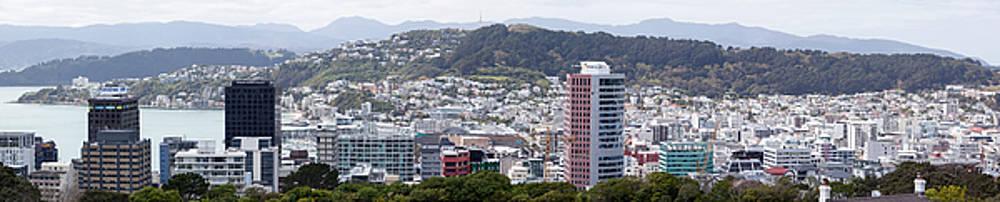 Ramunas Bruzas - Wellington Panorama