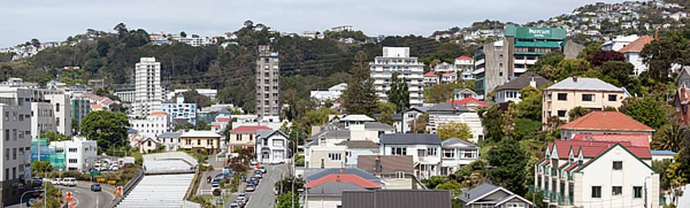 Ramunas Bruzas - Wellington Residential Panorama
