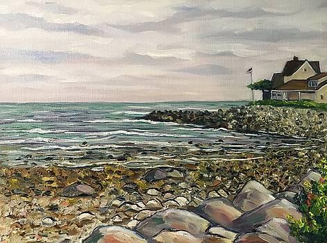 Wells, Maine Coastline by Richard Nowak