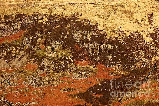 James Brunker - Welsh Hillside Abstract 2