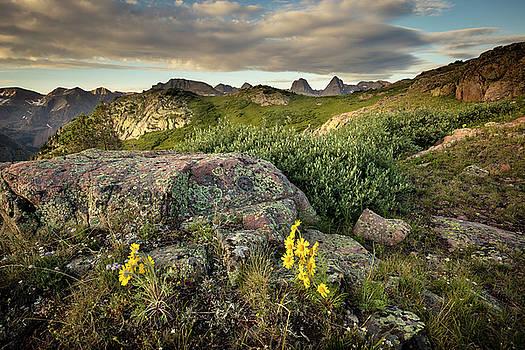 Weminuche Wilderness 2 by Whit Richardson
