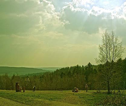 Wendover Woods by Anne Kotan