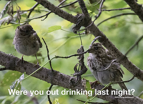 Were You Out Drinking? by Doug Mathewson