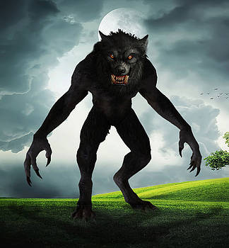 Werewolf by Solomon Barroa