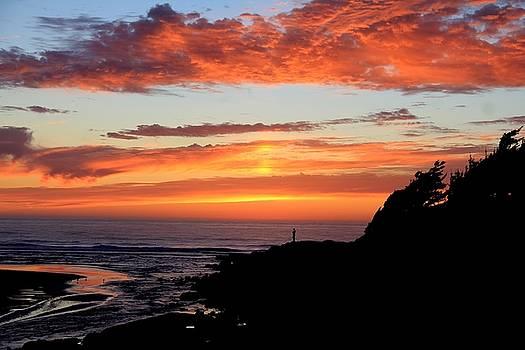 West Coast Sunset by Charlene Reinauer