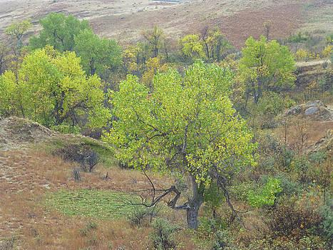 West Dakota September by Cris Fulton