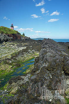 West Quoddy Head Light by Alana Ranney