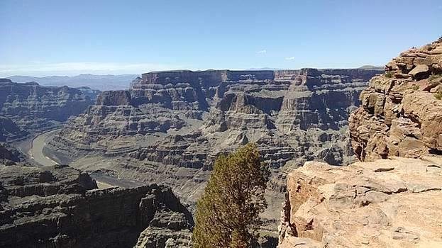 West Rim Grand Canyon 3 by Tammy Finnegan