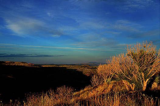 West Texas Vista by Roy Nierdieck