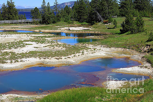 West Thumb Geyser Basin in Yellowstone National Park by Louise Heusinkveld