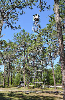 West Tower - Lookout Tower in Osceola National Forest by rd Erickson