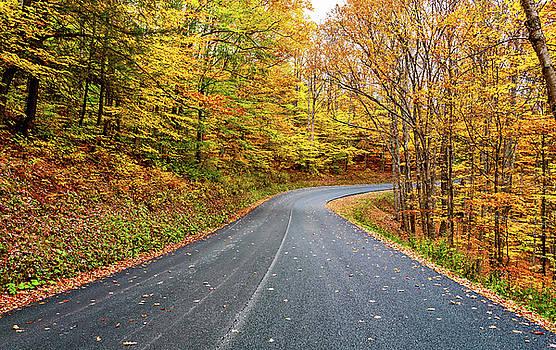 West Virginia Curves - In A Yellow Wood by Steve Harrington