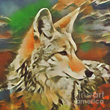 Western Coyote by Kathy Kelly