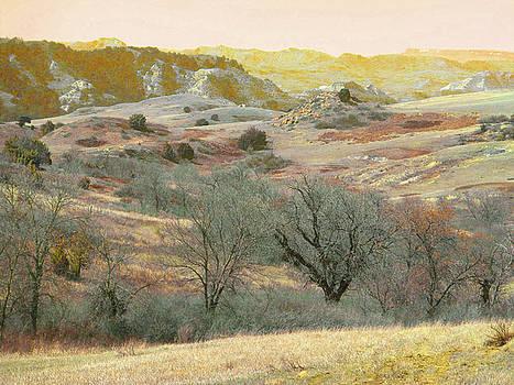 Western Edge Prairie Treasure by Cris Fulton