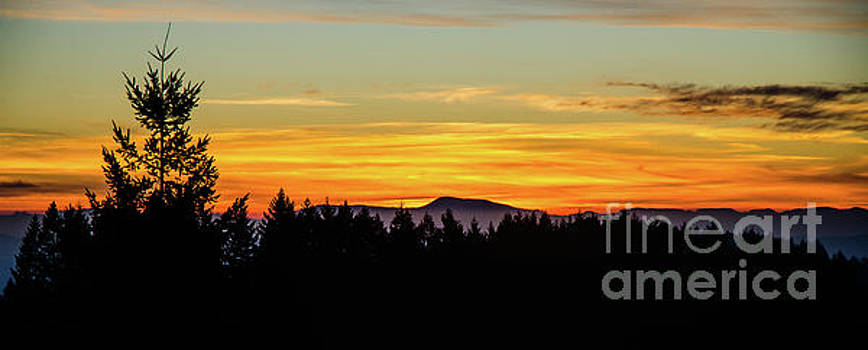 Western Oregon Winter Sunset by Nick Boren