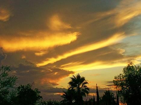 Kathleen Heese - Western sky
