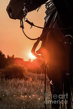 Western Sunset by Terri Cage