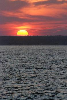 Mark Wiley - Westport Sunset