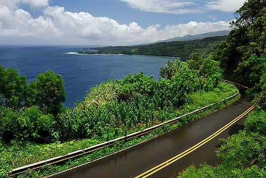 Reimar Gaertner - Wet road to Hana in Maui at Kaumahina State Wayside Park