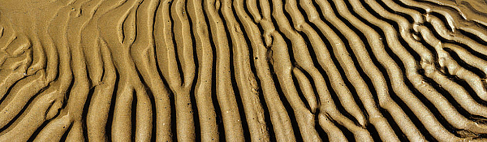 Wet sand formation grooves Panoramic photo 95 Degrees by Vassilis Triantafyllidis