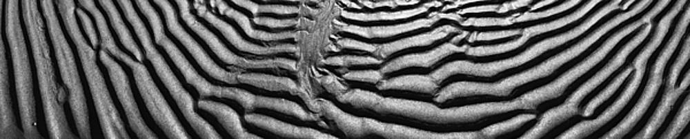 Wet sand formations Black and White Panoramic photo 150 Degrees by Vassilis Triantafyllidis