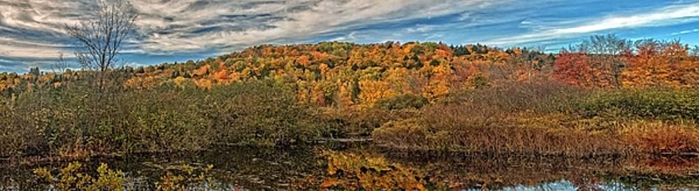 Robert Hayes - Wetland Panorama