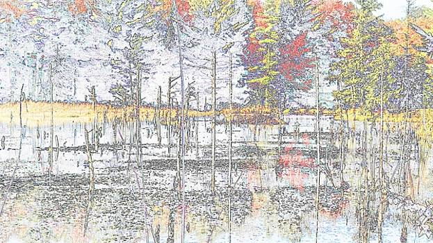 Mike Breau - Wetland Reflections Abstract
