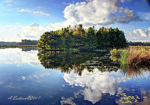 Wetland Wonders by Allan Einhorn