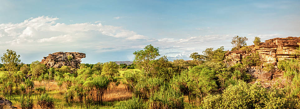 Wetlands and escarpment Panorama in Kakadu National Park -Northe by Daniela Constantinescu