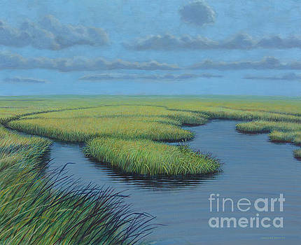 Wetlands by Chris Griffith