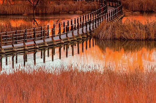 John De Bord - Wetlands Dawn