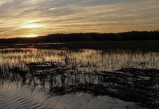 Wetlands Sundown by Robert Bolla
