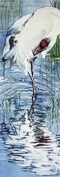 Vicky Lilla - Wetlands