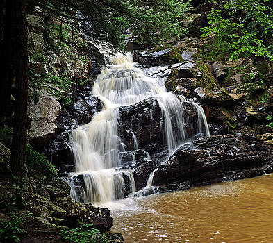 Wahconah Falls by Bill Morgenstern