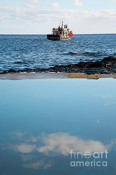 Whale watching boat by Gaspar Avila