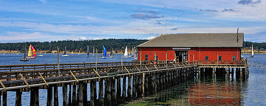 Wharf and Race Week by Rick Lawler