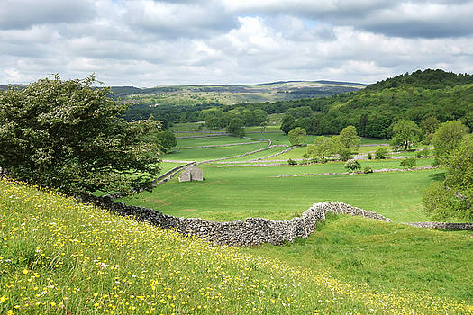 Wharfedale in the Yorkshire Dales by Paula Connelly