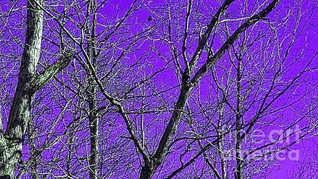 Rachel Hannah - What If The Sky Was Purple